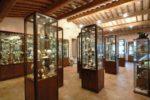 museo-ovo-pinto
